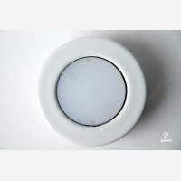 Cool white  Light